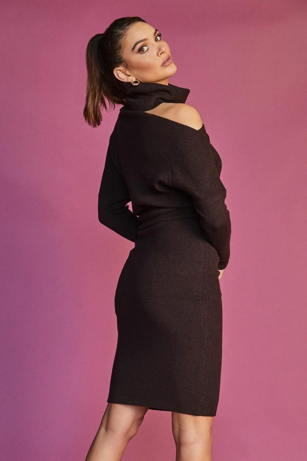 Anise Knit Dress Ladies Dress Colour is Chocolate